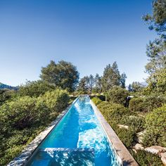 Eliot Lee,modern architecture,mid century furniture,design, pool
