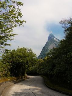 Estrada - Cristo Redentor - Christ The Redeemer - Corcovado - Estátua - Rio de Janeiro - Brasil - Brazil