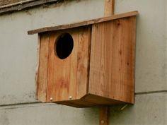Uilenkast van douglas schaaldelen Bird, Outdoor Decor, House, Home Decor, Decoration Home, Home, Room Decor, Birds, Haus