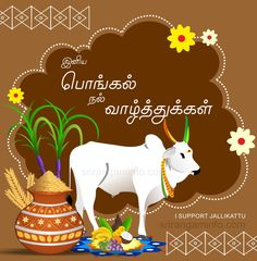 Collection of Pongal greetings and Greeting Cards in Tamil Happy Pongal In Tamil, Pongal Wishes In Tamil, Happy Pongal Wishes, Tamil Greetings, Happy Diwali, Wedding Anniversary Quotes, Happy Anniversary Wishes, Pongal Greeting Cards, Cardboard Picture Frames