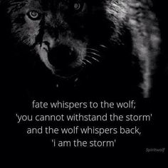 I am the storm. www.jekyllhydeapparel.com