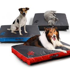 All Seasons Dog Bed for Large Dog Oxford Cloth Waterproof Breathable Soft Pet Dog Bed Cushion Sofa Blanket Mat for Dog Products Big Dog Beds, Pet Beds, Big Dogs, Large Dogs, Small Dogs, Cat Cushion, Cushion Pillow, Pillow Mat, Bed Cushions