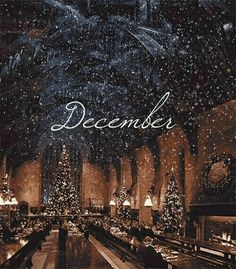 Imagen De December, Christmas, And Harry Potter