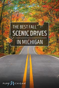 Find out where to see the state's most stunning fall foliage. Michigan Travel, State Of Michigan, Fall In Michigan, Michigan Vacations, Detroit Michigan, Lake Michigan, Travel Usa, Travel Destinations, Places To Travel