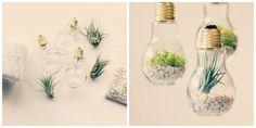 Bombillas decorativas Glass Vase, Diy, Home Decor, Crafts To Make, Bulbs, Bricolage, Interior Design, Handyman Projects, Home Interior Design