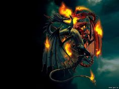 Dragon picture full hd wallpapers photos vance bishop 1025x769 dragon picture full hd wallpapers photos vance bishop 1025x769 voltagebd Choice Image