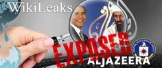 WASHINGTON - Al Jazeera ponudila WikiLeaks-u novac u zamenu za pristup diplomatskim kablovima do kojih je WikiLeaks došao u posed. Al Jazeera je ponudila Assange-u 1,3 miliona američkih dolara u zamenu za WikiLeaks podatake. Assange odbio ponudu.