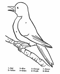 rainstick coloring pages for kids - photo#49