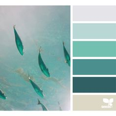 Color School ❤ liked on Polyvore featuring backgrounds, colors, design seeds, color palettes and fillers
