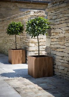 Indulge your garden and add a touch of contemporary design. This medium  planter, made from reclaimed teak, is hardwearing and makes a great  statement on the terrace or even by the front door. These teak wood  planters have a natural look which will weather over time. Ideal for bay  trees.W