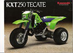 250 Tecate