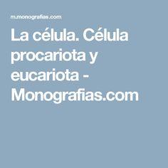 La célula. Célula procariota y eucariota - Monografias.com