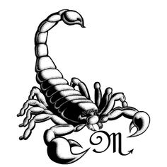 I really want a scorpion tattoo for my mom the Scorpio.