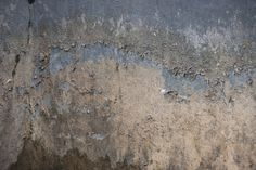 Texture_old_wall_by_zwarando.jpg (1095×730)