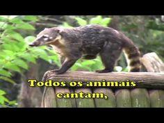 Todos os Animais Cantam - Cantando com as Crianças