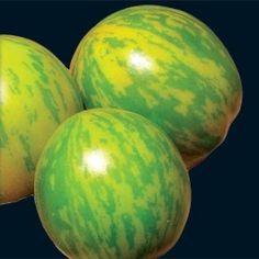 "Heirloom Tomato ""Green Zebra"""