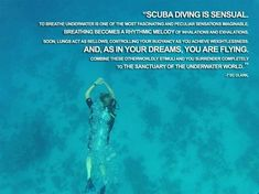 General pins regarding SCUBA, Diving, the Ocean and Boating.