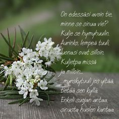 Posts about Runot/Lainatut sanat on Marlan jutut Finnish Words, Birthday Greetings, Life Lessons, Poems, Thoughts, Life Lesson Quotes, Poetry, Verses, Poem