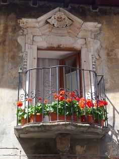 all the beauty things. Old Doors, Windows And Doors, Iron Windows, Fachada Colonial, Juliette Balcony, French Balcony, Balcony Flowers, Garden Windows, Traditional Doors