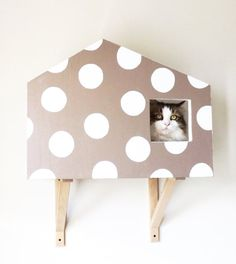 Cat Wall Design for cats _ mole grey Colour with white polka dots Cat Colors, Bassinet, Taupe, Dots, Handmade Gifts, Wall, Furniture, Vintage, Design