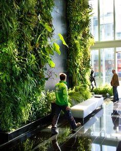 Ogrody wertykalne stają się bardzo modnym sposobem urządzania wnętrz, zarówno w domach prywatnych jak i w miejscach użyteczności publicznej. Zielona ściana to wspaniała kompozycja roślinna, która oprócz tego, że pięknie wygląda, daje ukojenie i relaks, to dodatkowo stanowią naturalny...