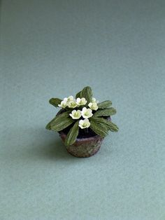 Primrose Flower Kit  for 1/12th scale Dollhouses, Florists and Miniature Gardens