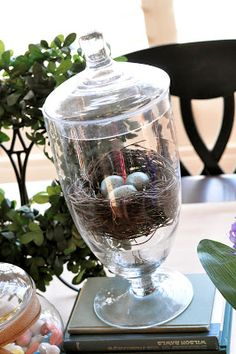 this is so cute - you should do this with the nest you have!!  Little Birdie Secrets - bird's nest decor