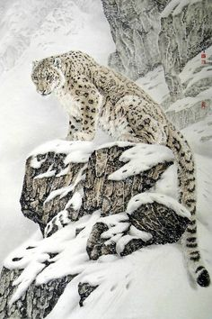Snow Leopard. My mother purchased a Charles France' Snow Leopard. Just a gorgeous painting.