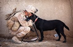 U.S. Marine Cpl. Kyle Click, a 22-year-old improvised explosive device detection dog handler with 3rd Platoon, Kilo Company, 3rd Battalion, 3rd Marine Regiment, and native of Grand Rapids, Mich., shares a moment with his dog Windy while waiting to resume a security patrol here, Feb. 27. (Photo by Cpl. Reece Lodder)