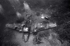 ☆ Divers above Airplane Wreckage :¦: Underwater Photographer Wayne Levin ☆