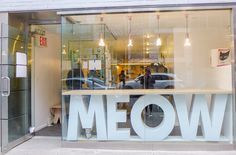 Meow Parlor, New York's Cat Cafe, in the Lower East Side New York Summer, Cat Cafe, Lower East Side, Waiting Rooms, Stuff To Do, Restaurant, Cats, Bucket, Home Decor