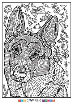 Free printable German Shepherd Dog coloring page available for download. Simple and detailed versions for adults and kids.