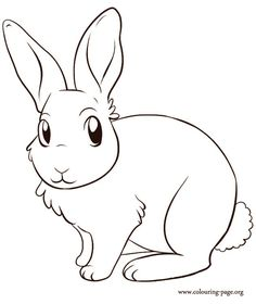 Free Printable Rabbit Coloring Pages For Kids Easter Pinterest