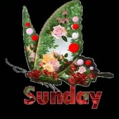 Super sunday wishes| sunday quotes wishes| sunday good morning wishes| sunday quotes, photo, gif, photography, message, sms, festival wishes image| #sunday #sunday_wishes Sunday Wishes Images, Sunday Photos, Super Sunday, Good Morning Wishes, Messages, Christmas Ornaments, Holiday Decor, Quotes, Flowers