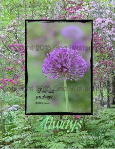 Always Matthew 28-20  purple onion flower by GinaWaltersdorffArt