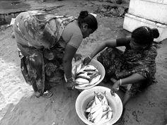 Small fish market