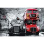 45 in. x 69 in. Taxi and Bus Wall Mural, Multicolor