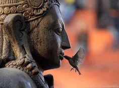Buddha e uccellino
