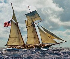Schooner Lynx Under Sails