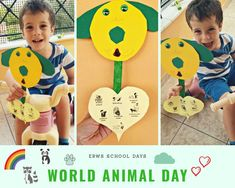 Pet Day, Animals Of The World, School Days