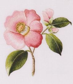 easy embroidery flower patterns - Google Search