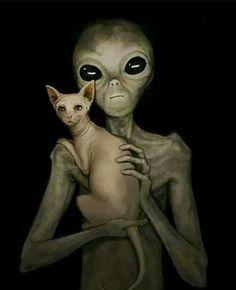 Alien Art by Novel-Ro ______________________________________________ UFO & Alien Artwork j o i n a n d s h a r e i f y o u l i k e Les Aliens, Aliens And Ufos, Ancient Aliens, Alien Aesthetic, Sphinx Cat, Psy Art, Alien Art, Trippy, Fantasy Art