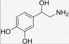 ADRENALINE molecule chemistry DECAL Vinyl die by Jakebenjamin03