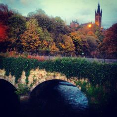 "@sipisopsop's photo: ""#Glasgow #university #Autumn #kelvingrove #kelvin #river #Bridge #Leaves #Tree #Trees #scotland"" #glasgow #glasgow2014 #scotland"