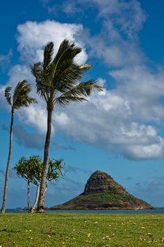 hawaii_2012-17