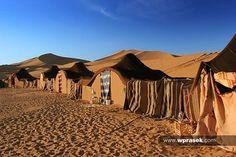 desert architecture - Google Search