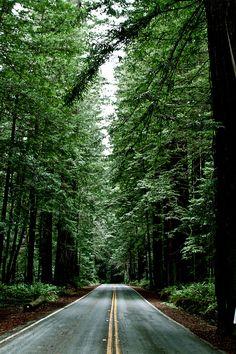 Humboldt, CA: I miss it so much sometimes