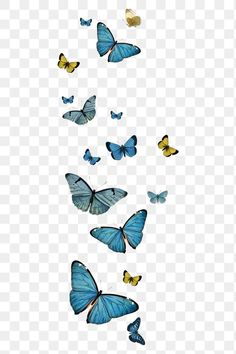 Image Hd, Free Image, Common Blue Butterfly, Brush Stroke Png, Butterfly Illustration, Light Background Images, Badge Design, Apple Wallpaper, Tumbler Designs