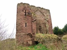 Scotland, Fife, Macduff's Castle - Intensive coal mining had caused the walls to crack. These were reinforced with brickwork but in the 1930s the castle was classed as 'extremely dangerous'. By the 1960s its condition was so critical that it was destroyed by explosives. A sole fragment remains admist yellow flowering Alexander.