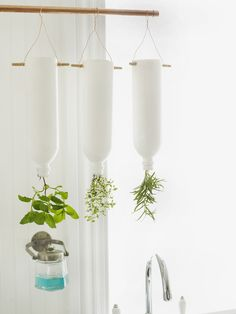 Upside-down herb garden made from plastic water bottles! From @Sweet Paul Magazine #DIY